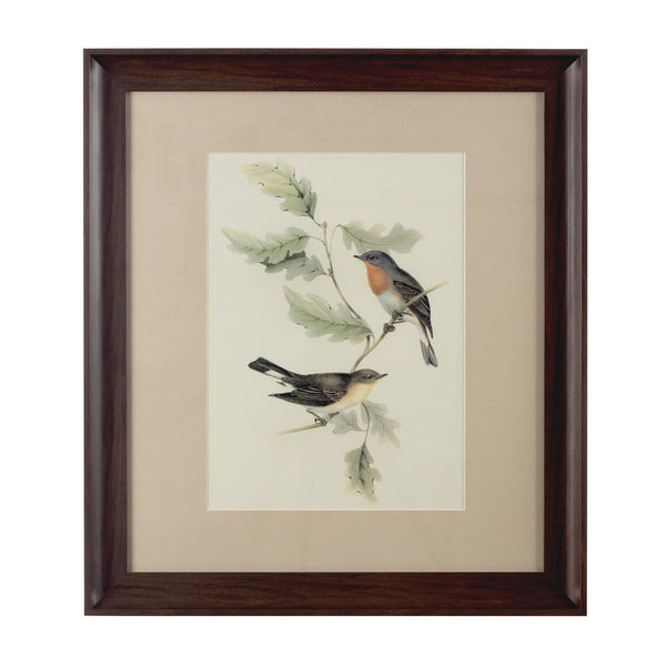Birds on a Branch, Framed Print
