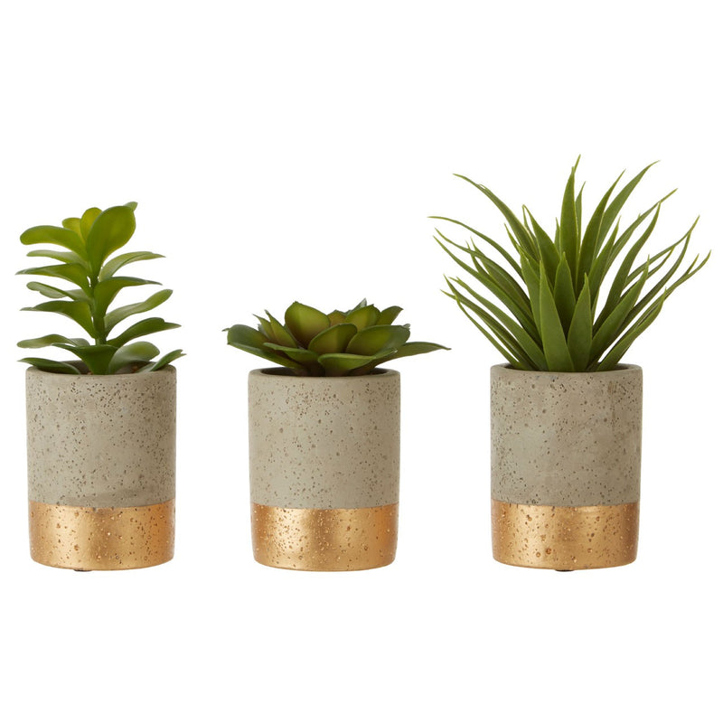 Vera Set of 3 Artificial Succulents, Grey / Gold