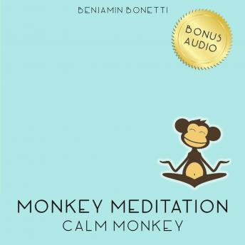 Calm Monkey Meditation ‰ÛÒ Meditation For A Calm Mind