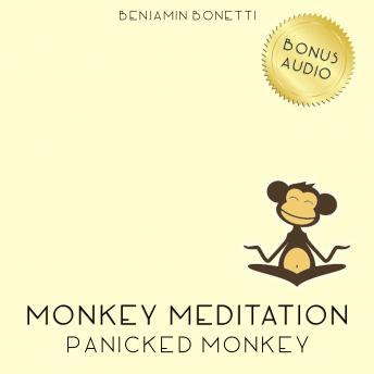 Panicked Monkey Meditation ‰ÛÒ Meditation For Panic Attacks