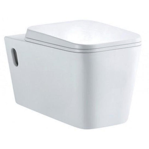 Earth Wall-Hung Toilet With Soft Close Seat Wall Hung