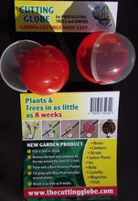 CUTTING GLOBE PROPAGATORS AND GARDEN PRODUCTS
