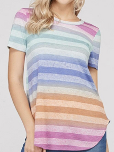 Plus Size Navy/Purple Multi Striped Round Neck, Short Sleeve Top