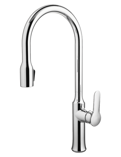 Andrej - Pull-Down Kitchen Faucet