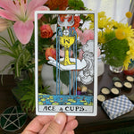 Tarot Card Cut Out - Ace of Cups