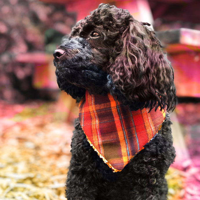 Autumn Plaid Lining Pet Bandana with Russett and Blue Flip Sequins.