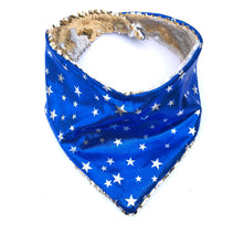 Blue and Silver Snap Back Bandana