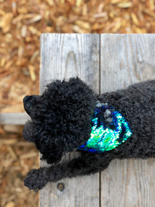 Peacock Green Flip Sequin Pet Bandana.