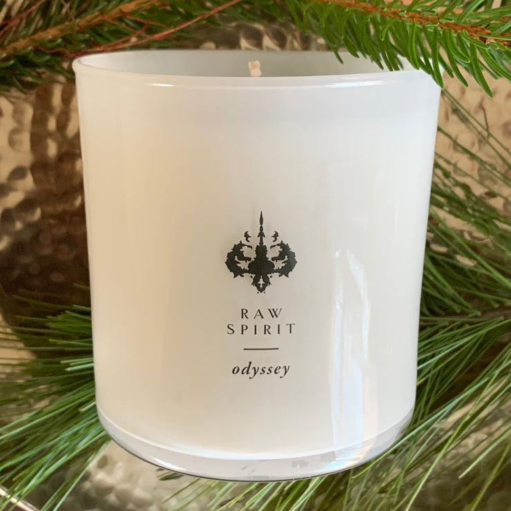Juicy notes of pear and light, fresh florals create a pleasant and dreamy scent to accentuate your space. Odyssey is an incredible blend of breezy florals and sweet fruit that achieves the feeling of a mystical excursion.