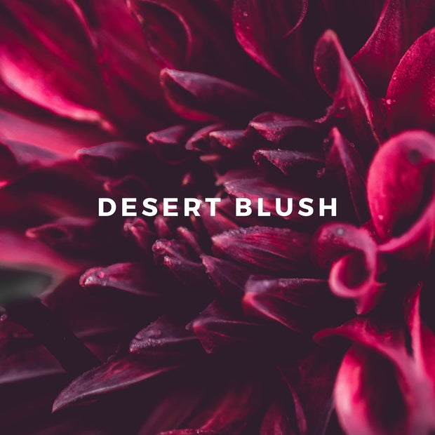 DESERT BLUSH Perfume, Eau de Parfum Spray 3.4 oz Luxury Size