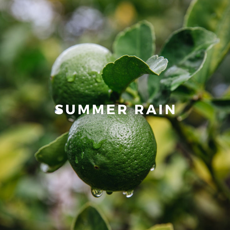 Raw Spirit Summer Rain perfume is inspired by summer in the Florida Everglades, when the air is thick with humidity and the afternoon storm clouds build. The summer rain begins, quickly cooling the earth and reviving your spirit.