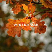 Winter Oak perfume is a decadent fragrance with smooth, creamy notes of aged American oak and layers of suede, saffron, premium Haitian vetiver and musk.