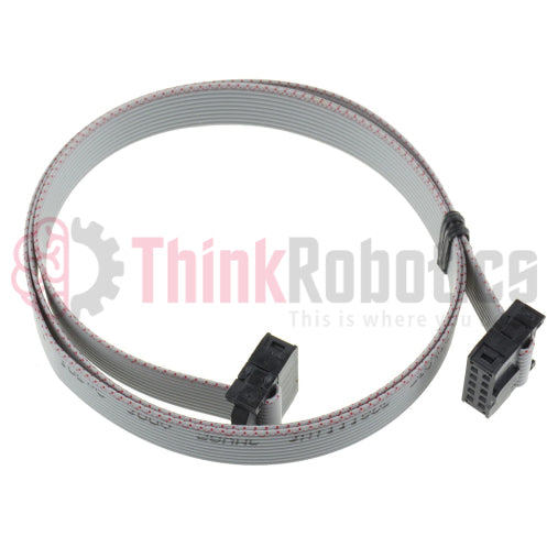 "IDC 2x5 10P 12"" (2.54mm Pitch) Silver Flat Ribbon Cable, Female to Female - ThinkRobotics.in"