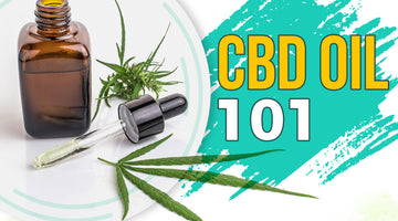 UNDERSTANDING CBD OIL 101 INTRODUCTION