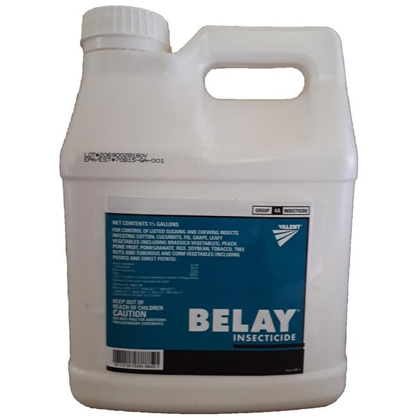 Belay Insecticide | Clothianidin