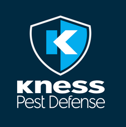 Kness Product Overview
