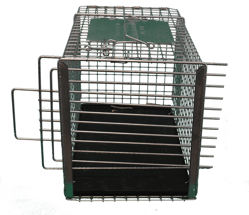 "Tomahawk Trap Divider 12"" in Transfer Cage"