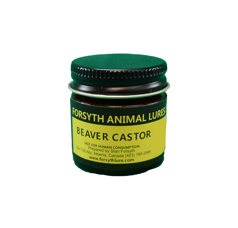 Beaver Castor Ground by Forsyths Animal Lures LTD