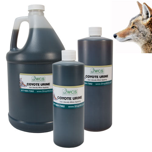 WCS  Coyote Urine