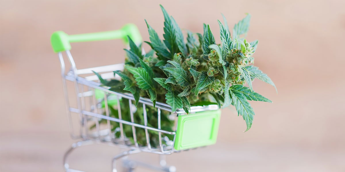 cannabis being purchased in tiny shopping cart