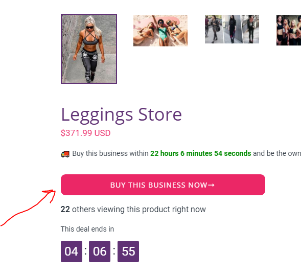 Transferring Shopify store to customer