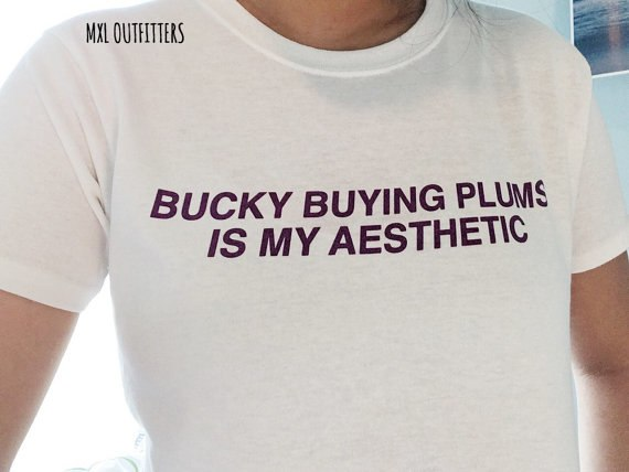 Korea Kpop Bucky Buying Plums Is My Aesthetic T-Shirt Purple Cool Tumblr  Unisex Streetwear Tops Tees Cotton Shirt