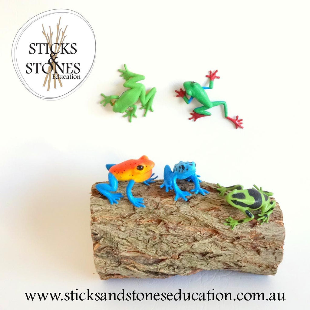 Frog Nature Tube - Sticks & Stones Education