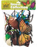 Insect Collection Polybag - Sticks & Stones Education