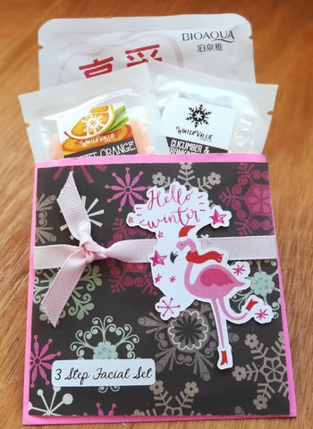 Holiday 3 step facial set, FLAMINGO, great for stocking stuffers and gifts under 5.00