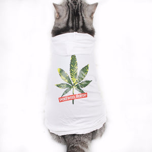 Smoke Weed Every Day Premium Pet Swag Hoodie