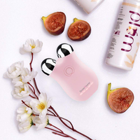 Microcurrent Mini Facial Massager