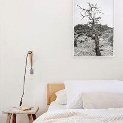 Color Cord Light in Bedroom with Scenic Wall Poster