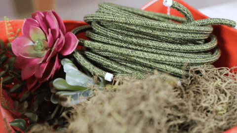 Coiled green electrical cord with artificial flowers