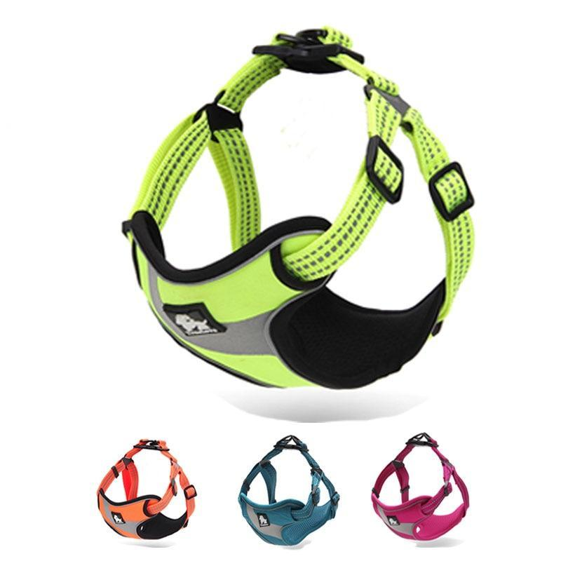 Reflective Comfort Harness