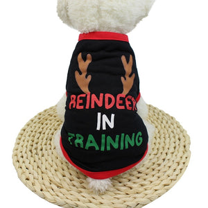 """Reindeer In Training"" - Shirt"