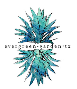 Evergreen Garden TX