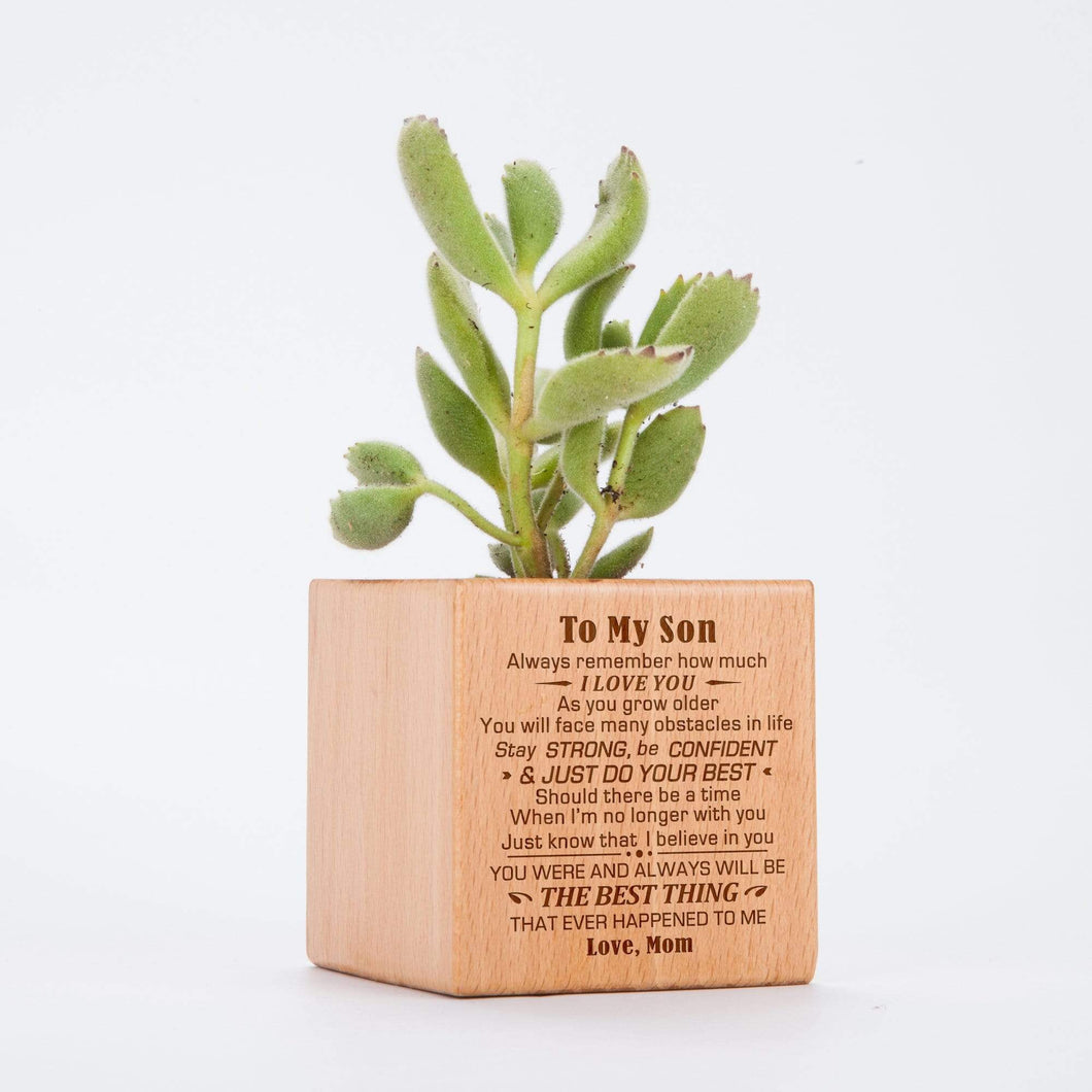 Mom To Son-The Best Thing Personalized Steamed Beech Micro Plant Pot PL018
