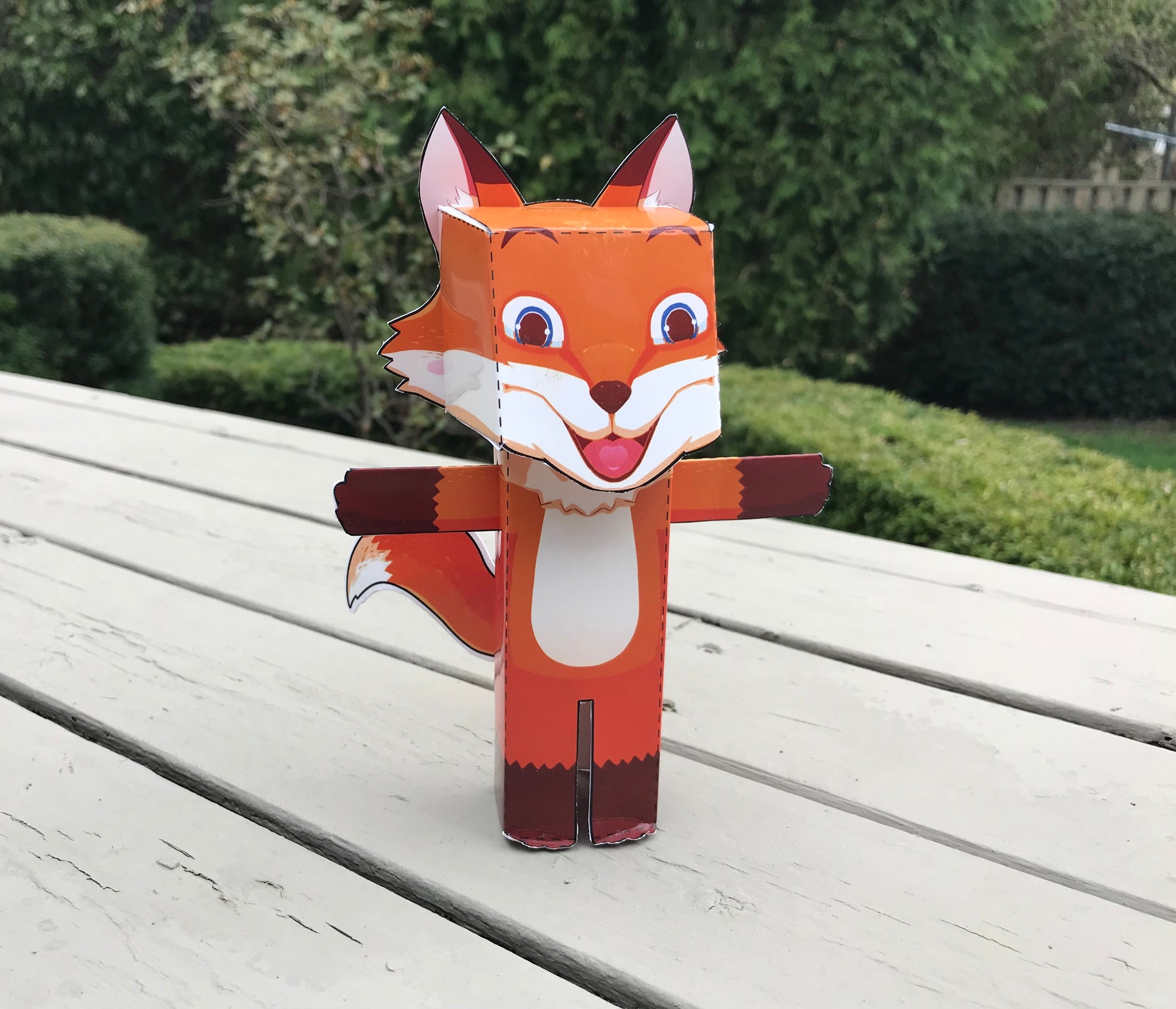 That is one boxy fox! Create your own 3D Rocco model with this simple kit!