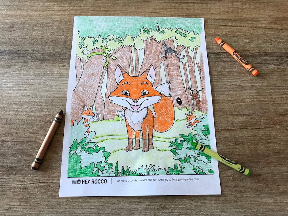 Grab your crayons! We have a special Hey Rocco themed coloring sheet!