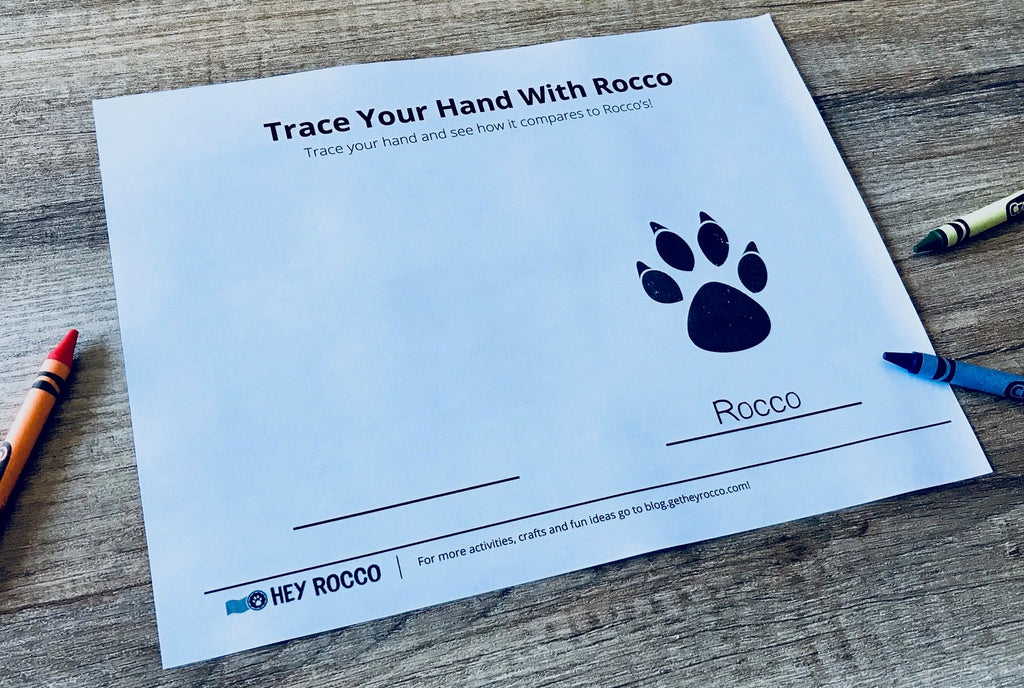 A printed Hey Rocco hand tracing activity sheet on a table