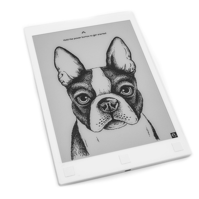 Einkpads | Boston Terrier puppy Power off Screen