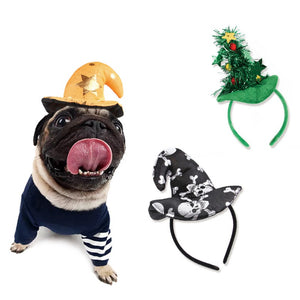 Cute Hat for Dogs & Cats