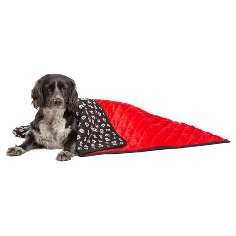 Disney Mickey Mouse Black Red 30 x 40-inch Dog - Cat Throw Blanket