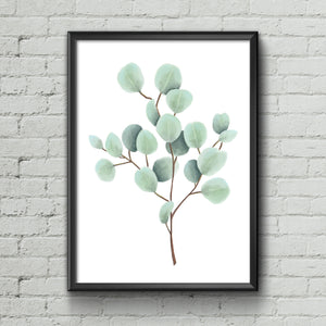 Eucalyptus Art Print - June Poppies Designs