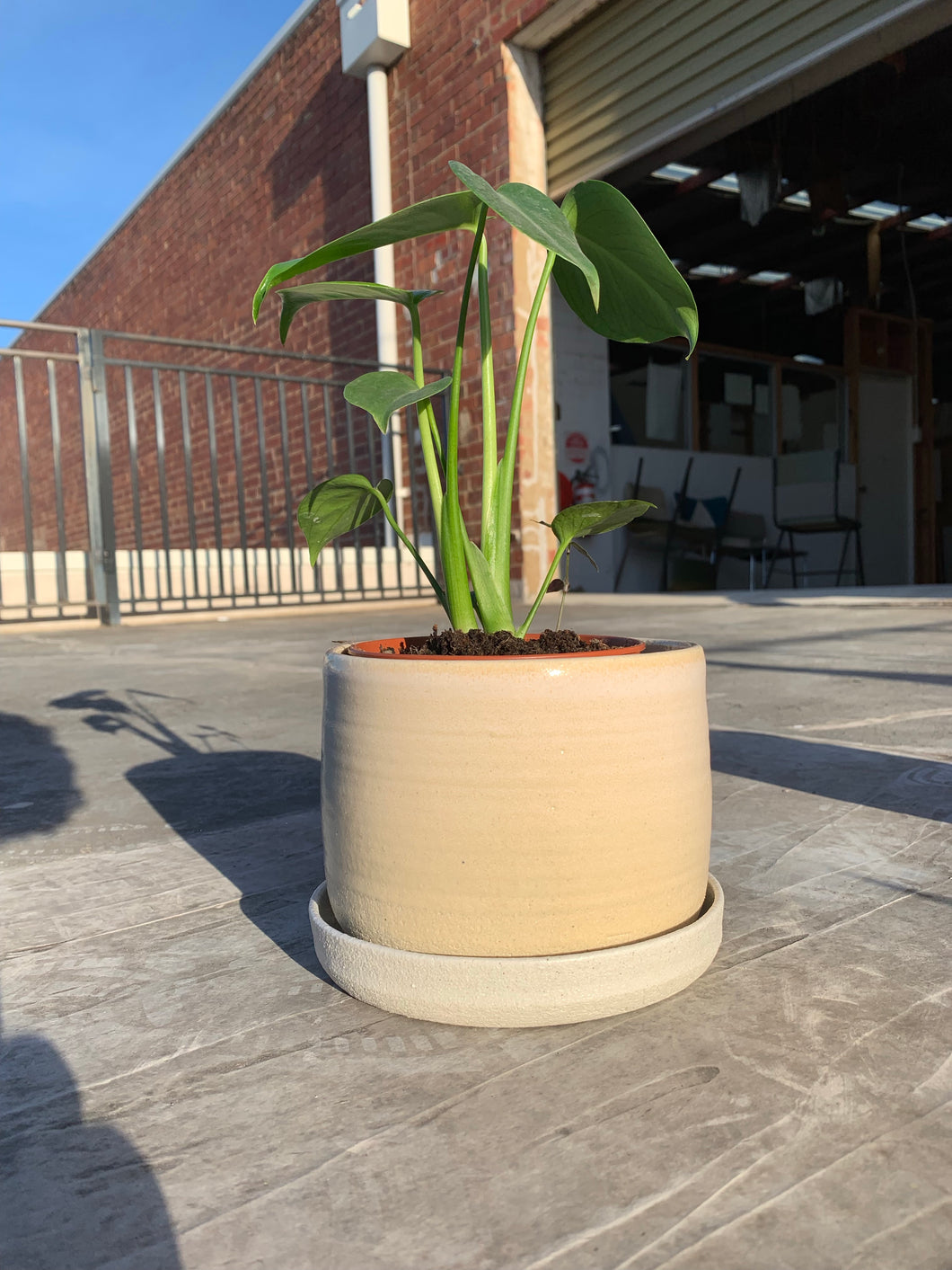 Large Planter with Drip Tray - Sand Dune