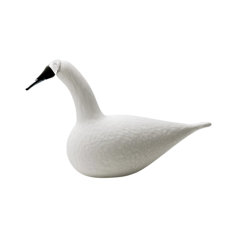 "Iittala BIRDS by TOIKKA (1972) Whooper Swan (13.25"" x 8.5"")"