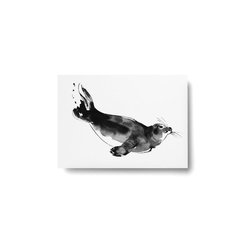 Teemu Järvi FOREST GREETINGS Single Animal Post Card (4 x 6) Ringed Seal