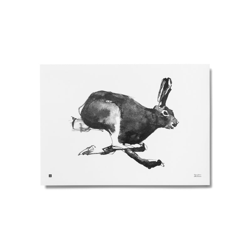 Teemu Järvi MOUNTAIN HARE print | 2 size options