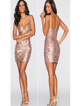 Barisimo SeQuin Dress