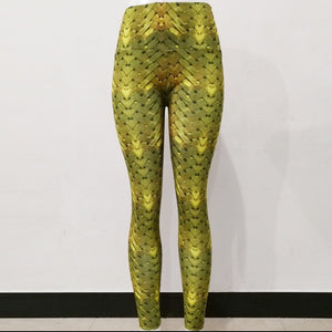 Barisimo Gold Yoga Pants
